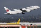 Společnost Japan Airlines zakázala nově svým pilotům konzumaci alkoholu 24 hodin před odletem.