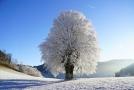 Večer bude místy sněžit, a to nejen na horách.