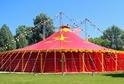 Cirkusy se zdarma otevřou zájemcům.