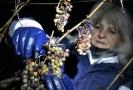 Ledové víno se může sklízet, až když je venku teplota minus sedm stupňů.
