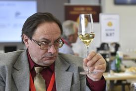 Na snímku z letošního Salonu vín je degustátor Petr Poizl.