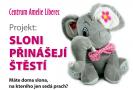 Prodej slonů pro štěstí pomůže pacientům s rakovinou v Liberci.