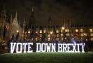 Demonstranti před britským parlamentem v Londýně.
