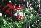 Vánoční stromeček (ilustrační foto).