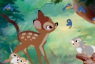 Disneyho pohádka Bambi.