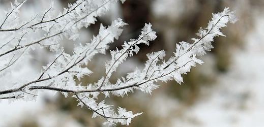 Na začátku února se ochladí (ilustrační foto).