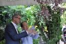 V singapurské botanické zahradě podle Babiše pojmenovali orchidej