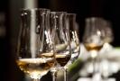 Nejlepší kolekci na Salonu vín má Vinselekt Michlovský.