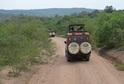 Čtveřice cestovatelů se vydala za horskými gorilami.