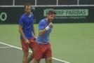 Čeští tenisté se utkají v baráži o kvalifikaci s Bosnou.