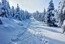 Slunečné počasí přilákalo do českých hor tisíce lidí.