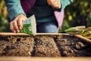 Deset tipů jak odzimovat zahradu.