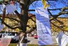 Strom s básněmi v Blansku.