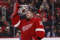 Brankář Red Wings Jimmy Howard.