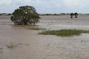 Půl milionů lidí v ohrožení. Počet obětí ničivé cyklóny narůstá
