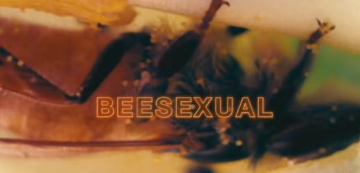 Studentka porno videa