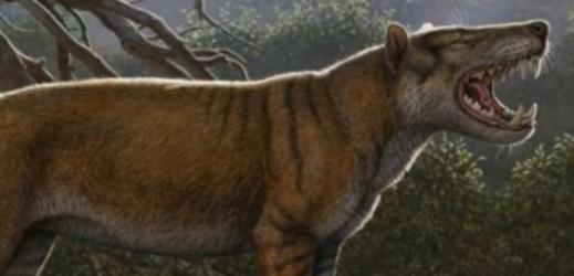 V keňském muzeu se našly kosti dosud neznámého obřího savce.