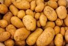 V zemědělství se zvýšily ceny brambor, a to téměř o polovinu.