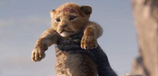 Simba v hrané verzi Lvího krále.
