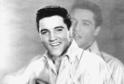 Muzikant Elvis Presley.