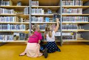 V knihovnách se stáhne víc digitálních dokumentů než půjčí knih
