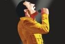 Plakát k představení Freddie Concert Show.