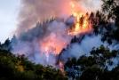 Lesní požár na Gran Canaria.