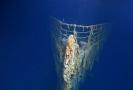 Rozpad vraku Titaniku.