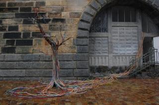 Kabelový strom na pražské náplavce.
