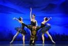 Soubor Royal Moscow Ballet zatančí Labutí jezero.
