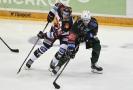 Hokejový zápas Sparta Praha - Karlovy Vary.