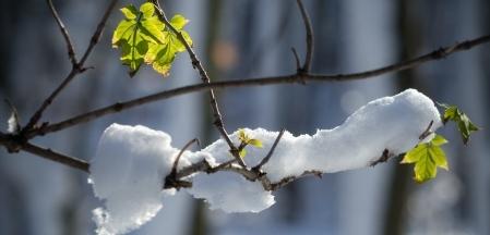 V neděli nastane astronomická zima (ilustrační foto).