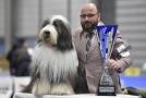 Jan Zbořil s vítězkou národní výstavy psů.