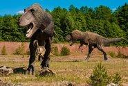 Dinosauři mohli být teplokrevní, domnívají se vědci