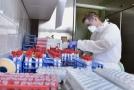 Laboratoř na testování koronaviru.