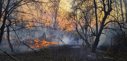 Lesy v okolí Černobylu se stále nepodařilo uhasit