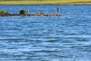 Před pěti lety bylo zpřístupněno rekultivační jezero Milada