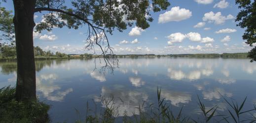 Výlov Sopřečského rybníka, kde se u ryb vyskytl herpes virus, začne v září