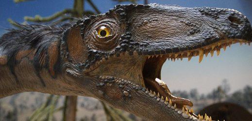 Dinosaura trápil stejný nádor kosti jako dnes člověka