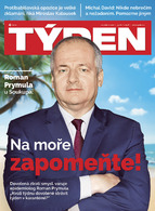 Týden