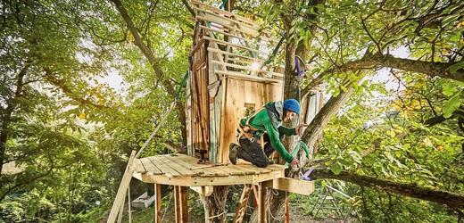 Stavba domku na stromě.