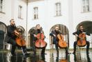 Prague Cello Quartet.