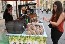 Pracovnice Státní zemědělské a potravinářské inspekce (SZPI) kontroluje 16. září 2021 jeden ze stánků s burčákem v centru Brna.