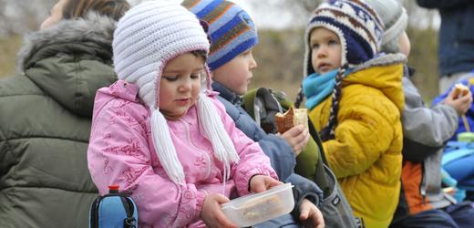Lesní mateřská školka (ilustrační foto).