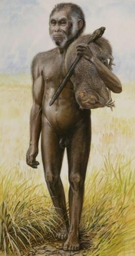 Hobit aneb Homo floresiensis - antropologická senzace století.