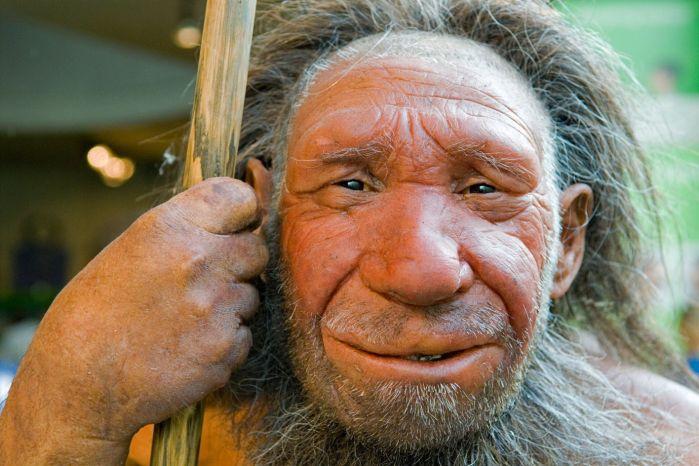 004bb272cca Nenadertálci v konkurenci s druhem Homo sapiens neobstáli.