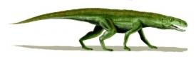 Gracilisuchus stipanicorum, jeden z dinosauřích konkurentů.