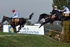 Kůň Klip(číslo 4) na jedné z překážek než došlo k tragickému zranění.