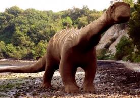 Sauropodní dinosauři patřili k největším zvířatům planety.