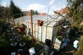 Ve skleníku prý kočky nadělají mnohatisícové škody.